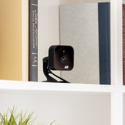 Napa indoor security camera